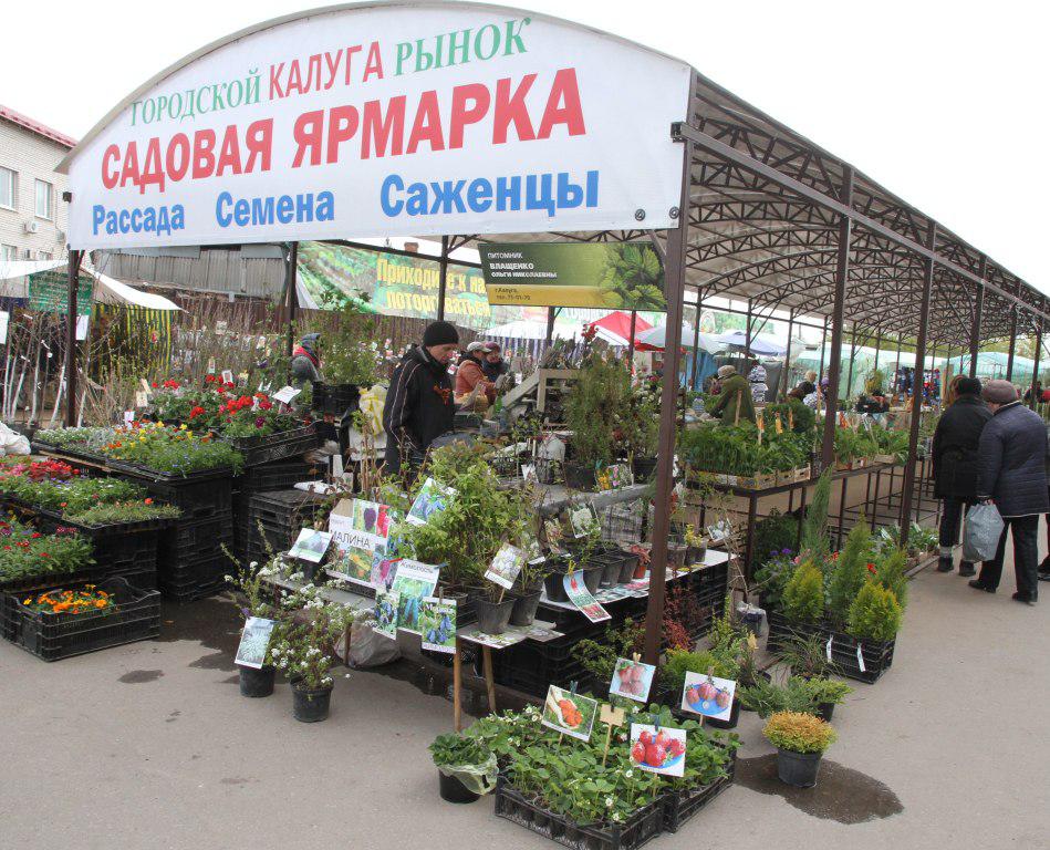 Строительные, садовые, продуктовые рынки